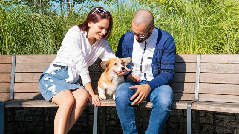 The happy couple are sitting on the bench in the park with little dog. Cute corgi Pembroke puppy on its owners hands. Corgi puppy royalty free stock photo
