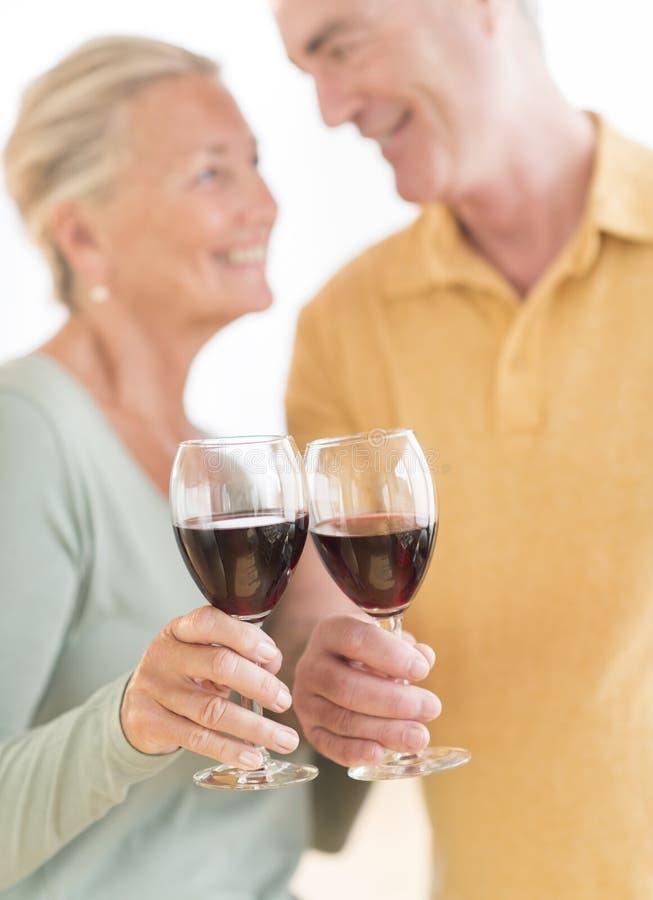 Happy Couple Toasting Wineglasses royalty free stock photos