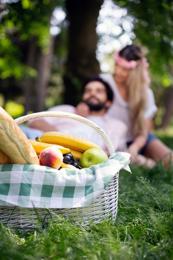 Happy couple on vacation. Lovers enjoy each other in the park, picnic. Happy couple on vacation. Lovers enjoy each other in the park royalty free stock image