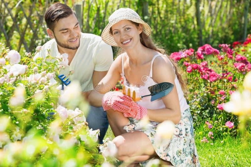 Happy couple working in garden. Happy couple having fun working in the flowering garden stock photo