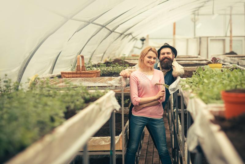 Happy couple working in green house. Smiling blond woman holding hand fork and bearded man in hat standing between rows royalty free stock images