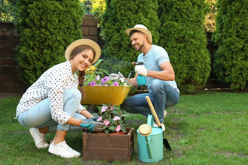 Happy couple working together in garden royalty free stock photo
