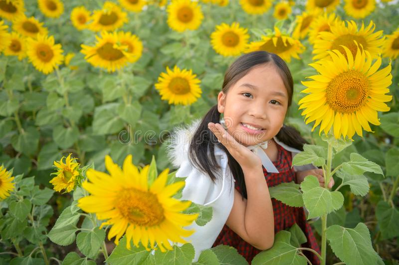 Happy cute asian girl smile with sunflower stock photos