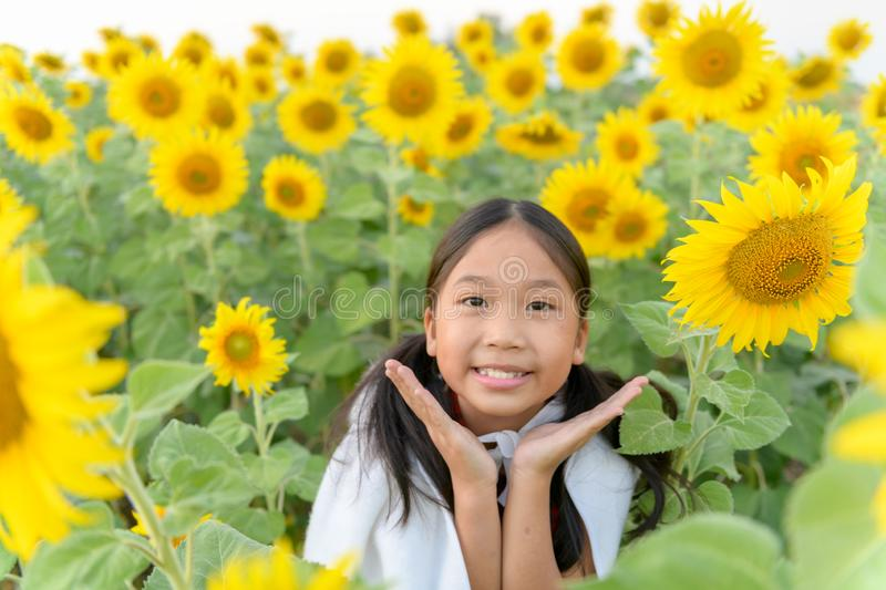 Happy cute asian girl smile with sunflower royalty free stock photos
