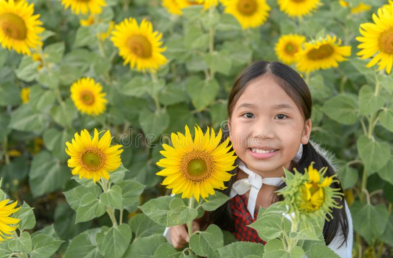 Happy cute asian girl smile with sunflower stock images