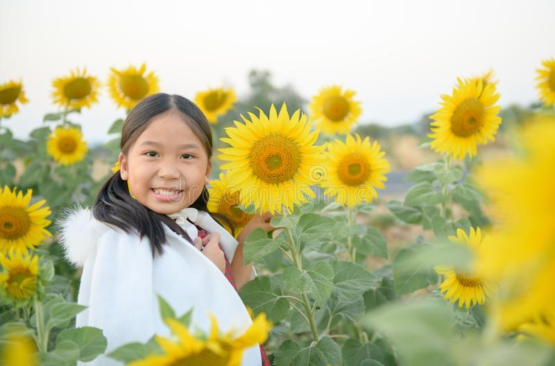 Happy cute asian girl smile with sunflower royalty free stock image