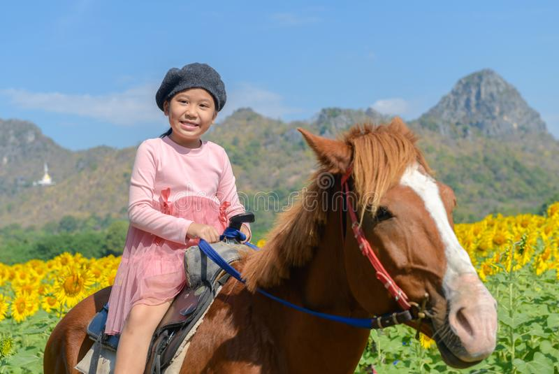 Happy cute girl riding horse in sunflower field stock photos