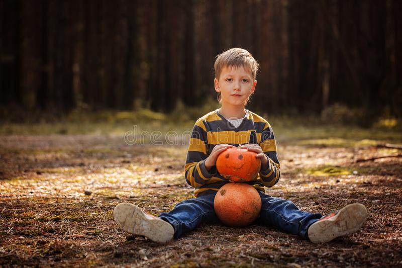 Happy cute little kid boy with halloween pumpkin in autumn dark forest. Happy cute little kid boy with halloween pumpkin in autumn dark forest royalty free stock image