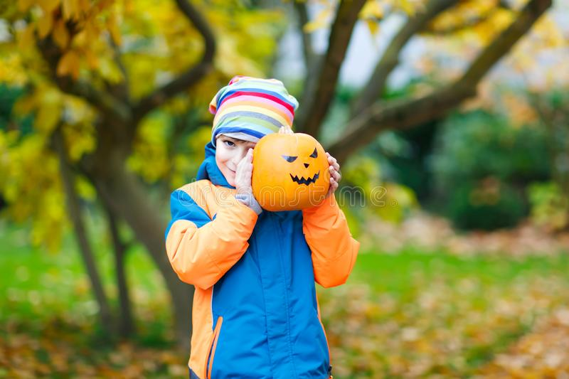 Happy cute little kid boy with halloween pumpkin lantern. Funny child in colorful clothes having fun and playing in. Autumn garden on cold autumnal day. Scary royalty free stock images