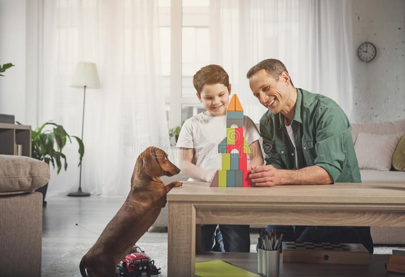 Cheerful father and son having fun with dog at home stock photography