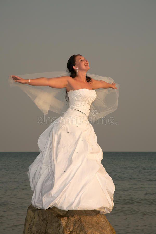 Download Happy day. stock photo. Image of bride, beautiful, dress - 21331294