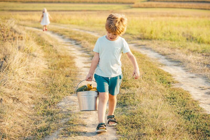 Happy day. Little boy smiling. Positive child. Happy little child smiling. Little boy enjoy walk. Happy child in summer royalty free stock photography