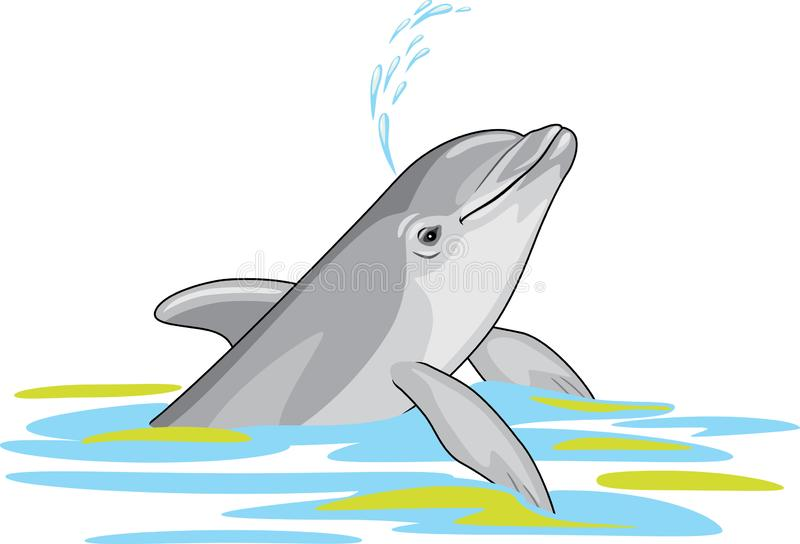Happy dolphin splashes water vector illustration