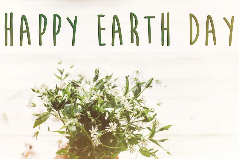 Happy earth day text sign on beautiful daisy flowers on rustic w. Hite wooden background top view. greeting card. environmental concept. earth day. save royalty free stock images