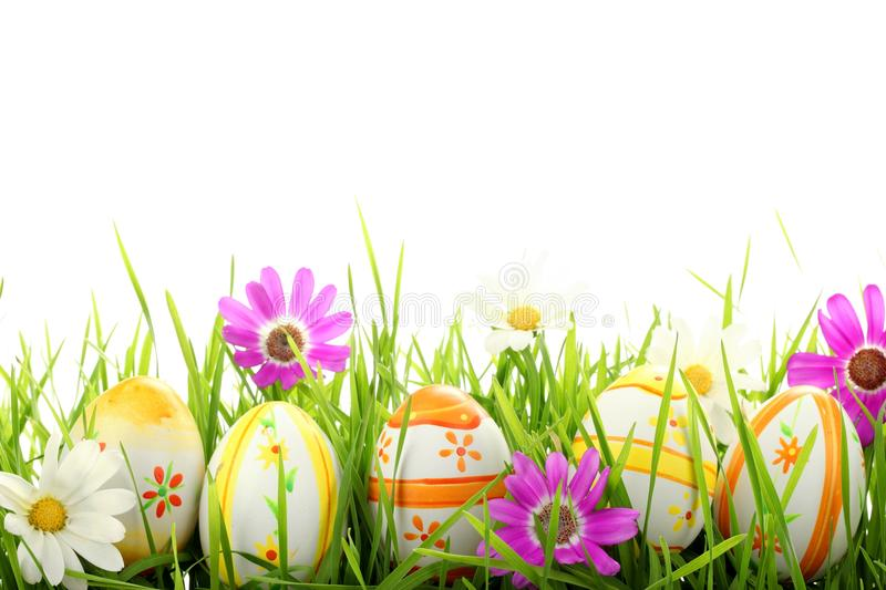 Happy Easter. Row of Easter Eggs with Daisy on Fresh Green Grass royalty free stock photo