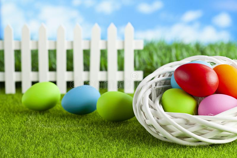 Happy Easter - colored eggs in nest and on short cut grass royalty free stock photos