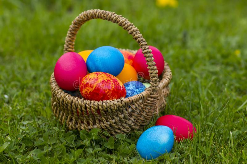 Happy Easter, colorful eggs in a basket royalty free stock photo