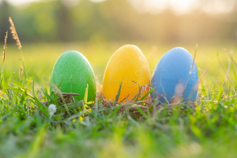 Happy Easter with Colorful Eggs cute bunny in the morning, Funny decoration in grass spring season. Happy Easter with Colorful Eggs cute bunny in the morning stock images