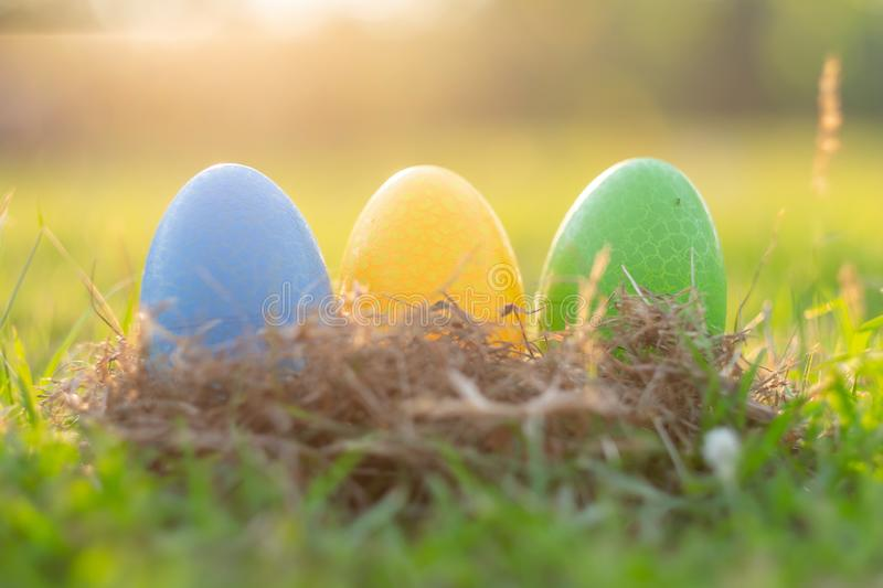 Happy Easter with Colorful Eggs cute bunny in the morning, Funny decoration in grass spring season. Happy Easter with Colorful Eggs cute bunny in the morning royalty free stock photo