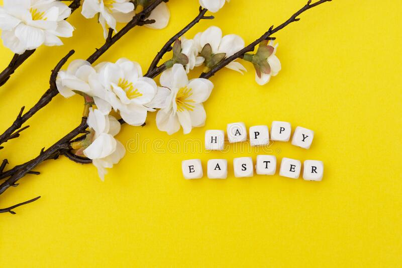Happy Easter. Cubes with text on yellow background. Spring brunches with white flowers. Minimalistic flat lay stock photography