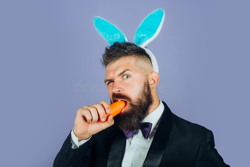 Happy easter and funny easter day. Bunny rabbit man eat carrot. Cute bunny. Celebrating Easter. Happy easter and funny easter day. Bunny rabbit man eat carrot stock photos