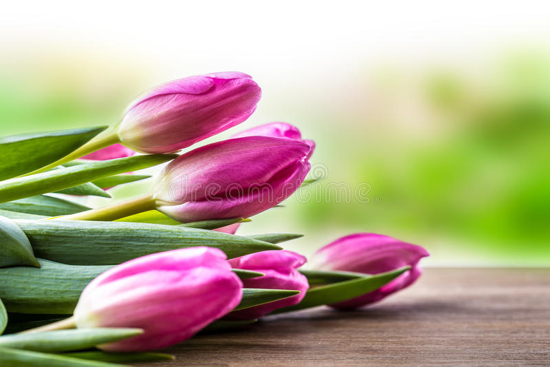 Happy easter. Multicolored spring tulips and Easter eggs. Spring and Easter decorations royalty free stock photography