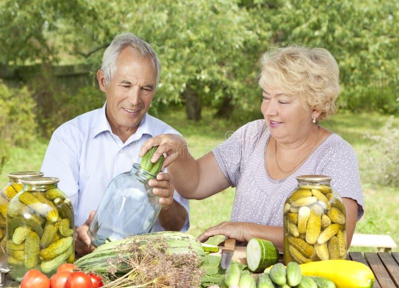 Happy elderly couple royalty free stock photo