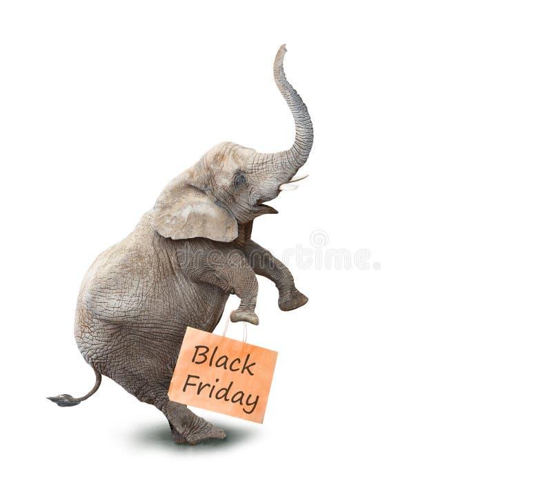 Happy elephant going to supermarket. royalty free stock photo