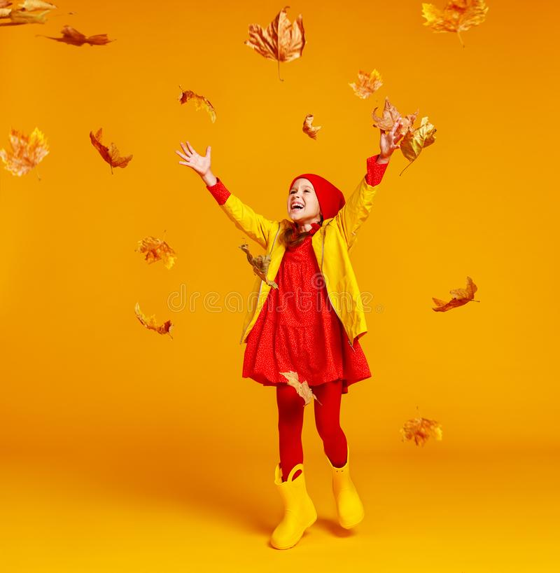 Happy emotional cheerful child girl jumping and laughing  with autumn leaves   on colored yellow background. Young happy emotional cheerful child jumping and stock images