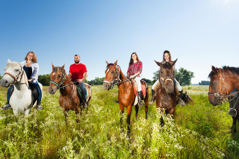 Happy equestrians riding horses in summer field. Big group of equestrians enjoy riding horses in summer field royalty free stock image