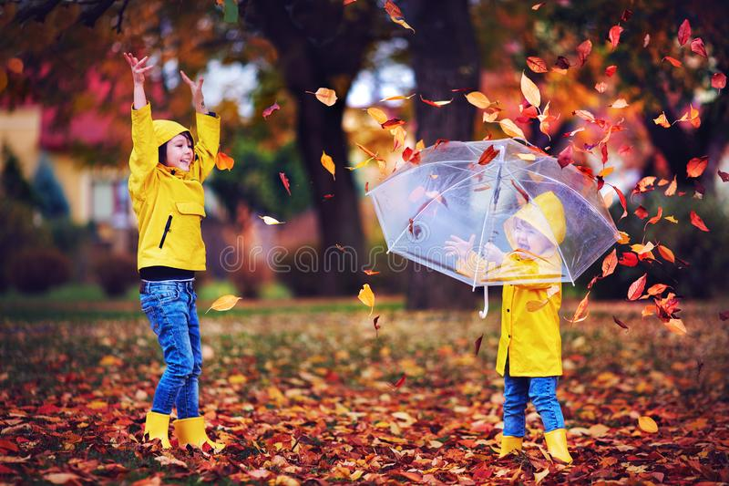 Happy excited kids having fun, throwing leaves in autumn park, wearing rain boots and coats royalty free stock photo