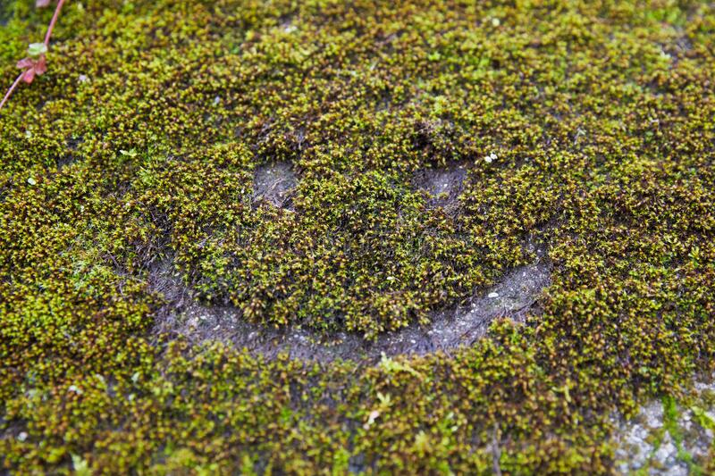 Happy face in moss on an old wall in France. Happiness everywhere you look stock images