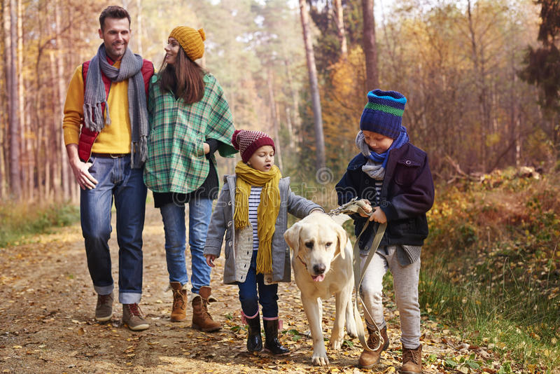 Happy family during autumn royalty free stock photos
