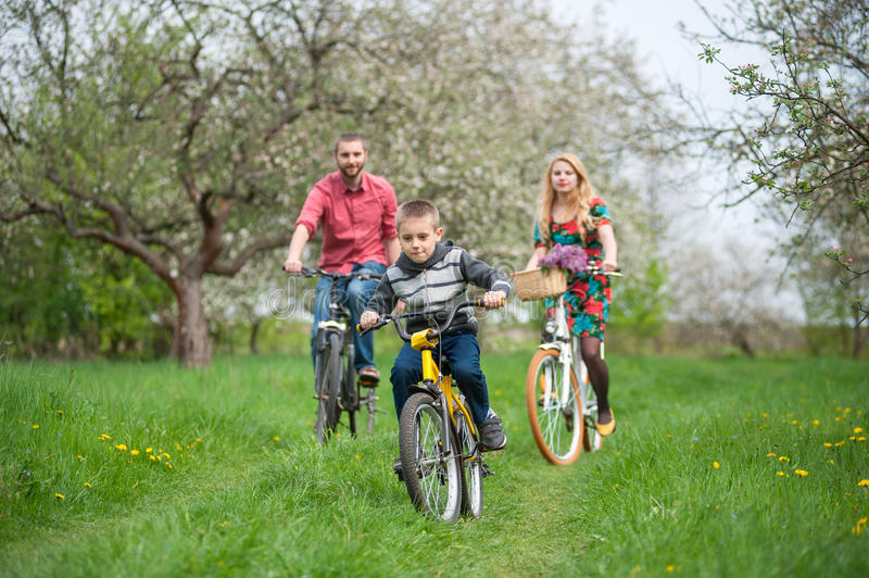 Happy family on a bicycles in the spring garden. Happy boy on a bicycle in front of and behind its parent in the spring blooming garden riding bikes. Family royalty free stock image