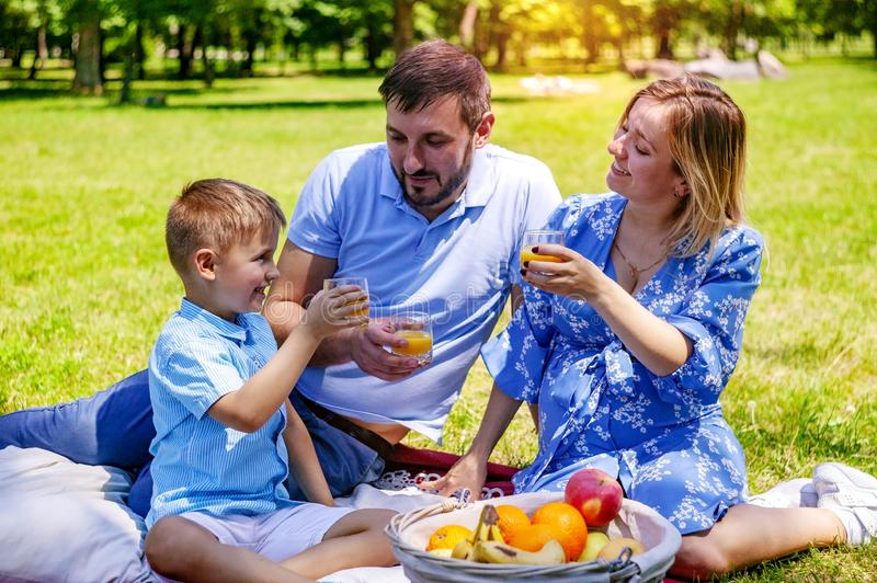 Happy family on the blanket resting in the park, pregnant mother. royalty free stock photos