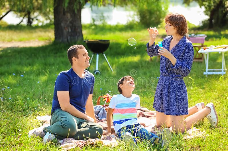 Happy family blowing soap bubbles on summer picnic in park stock photo