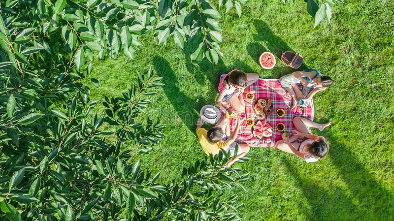 Happy family with children having picnic in park, parents with kids sitting on garden grass and eating healthy meals outdoors stock image