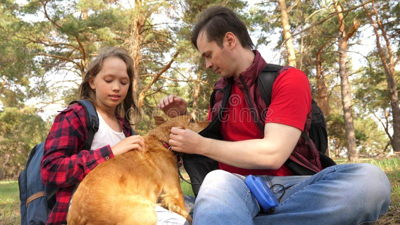 Happy family with a dog and children in a camping trip. Carefree teenagers with their father on a day off. Hiking stock images