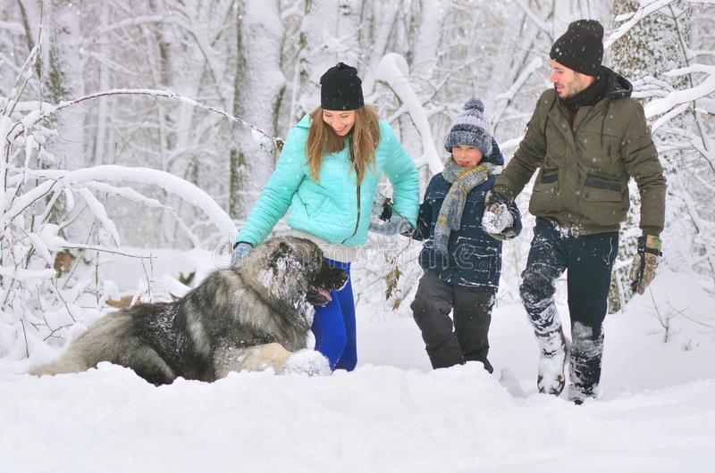 Happy family with dog outdoors in a winter forest. Mother, fother, son and big pet dog. Giant Caucasian Shepherd Dog. Cropped stock photography