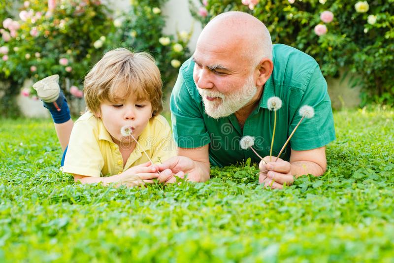 Happy family father and child on meadow with a kite in the summer on green grass. Cute boy with dad playing outdoor royalty free stock photo