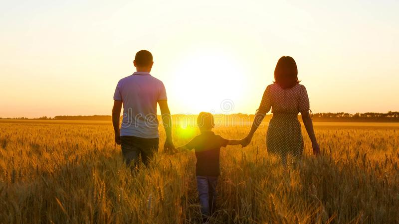 Happy family: father, mother and little son are on the wheat field, holding hands. Silhouette of a man, woman and child royalty free stock images