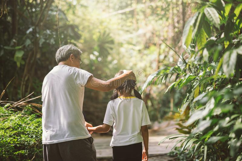 Happy family grandfather and granddaughter walk on nature on sunset hold hand. royalty free stock photo