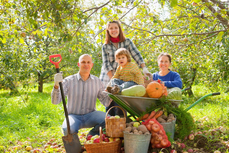 Happy  Family With  Harvest Royalty Free Stock Photography