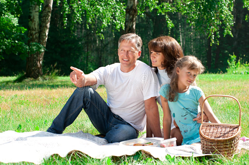 Download Happy family having picnic stock image. Image of green - 20289669
