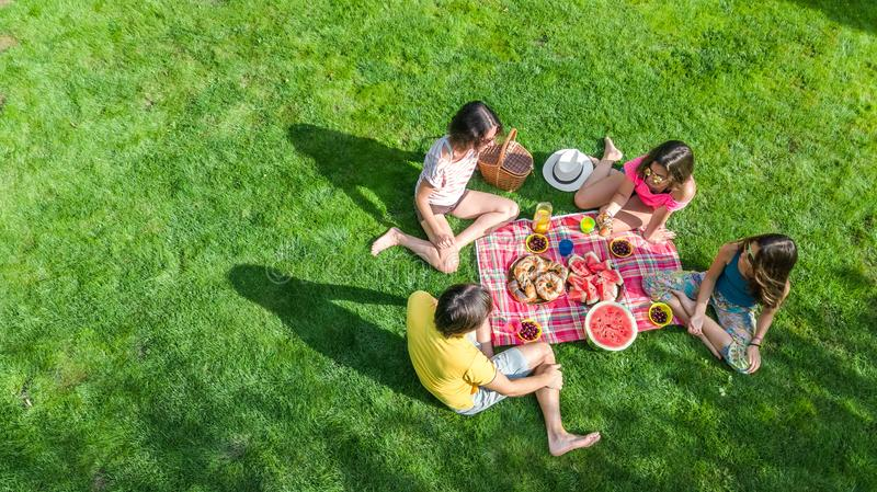 Happy family having picnic in park, parents with kids sitting on grass and eating healthy meals outdoors. Aerial view from above stock photography