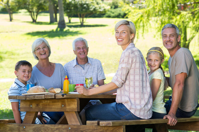 Happy family having picnic in the park. On a sunny day stock photos