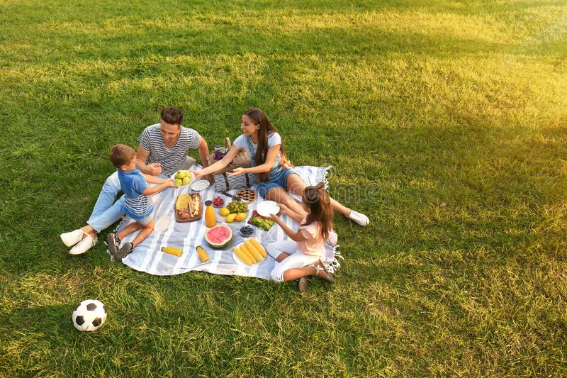 Happy family having picnic in park  sunny summer day royalty free stock image
