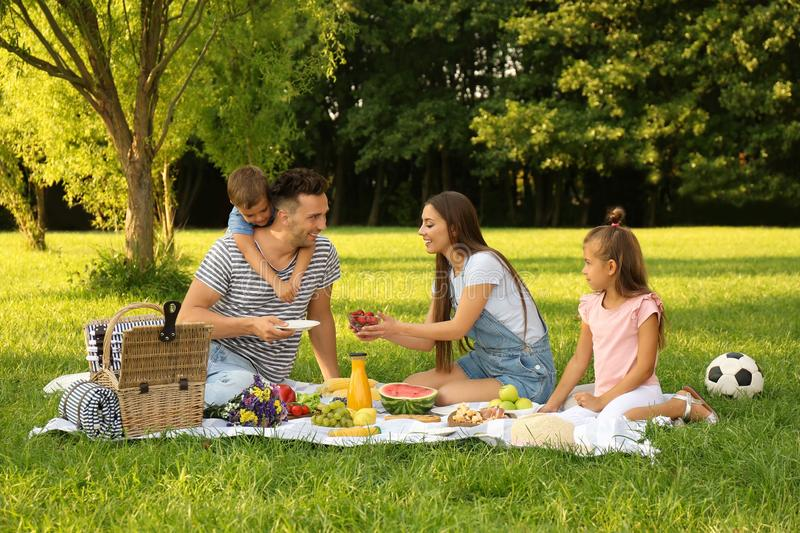 Happy family having picnic in park on  summer day. Happy family having picnic in park on sunny summer day stock images
