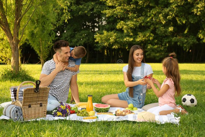 Happy family having picnic in  on sunny summer day. Happy family having picnic in park on sunny summer day royalty free stock image