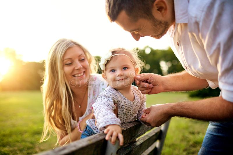 Happy family in a park in summer autumn. Mother, father and baby play in nature in the rays of sunset royalty free stock photography